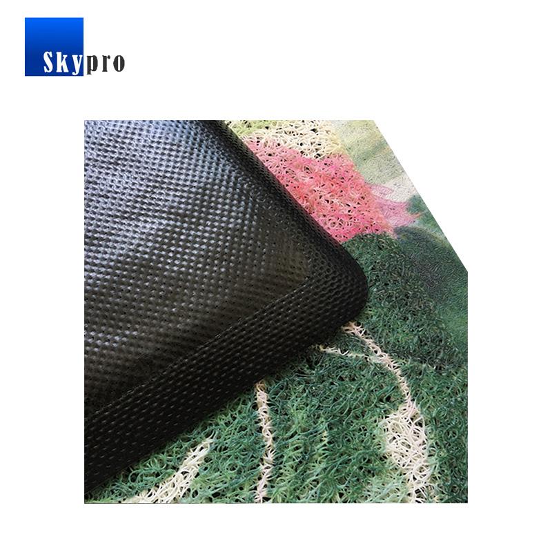 Skypro entry door mats factory for home-1