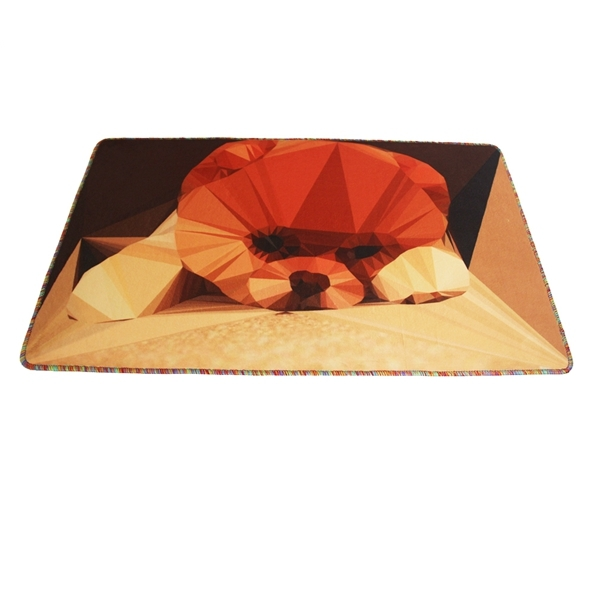 New Absorbent Comfortable And Soft Dog Door Mats For Living Room