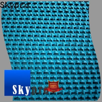 Skypro plastic conveyor belt company for kitchen