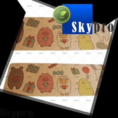 Skypro double front door mat factory for aprtment