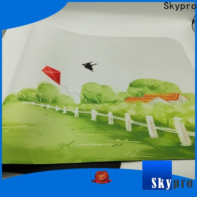 Skypro Top front door floor mats for sale for aprtment