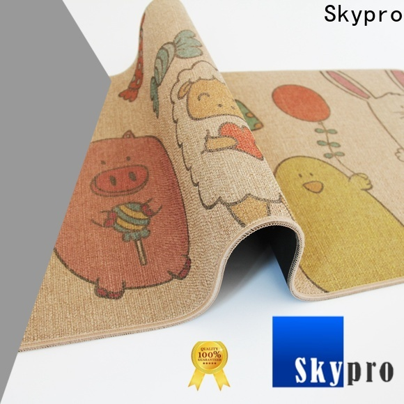 Skypro High-quality double front door mat supply for home
