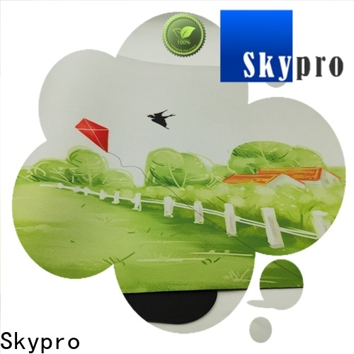 Skypro Top colourful door mats supplier for home