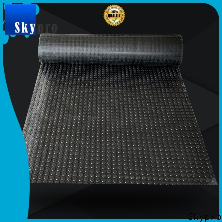 Skypro Professional thick rubber mats for gym for sale for car