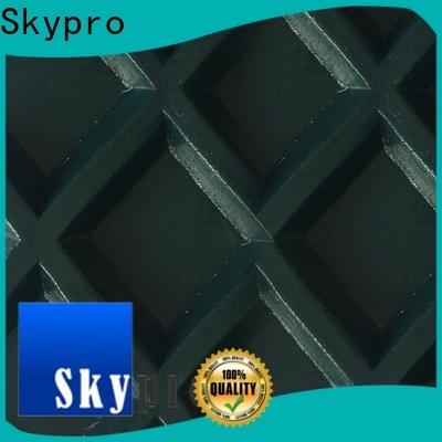 Skypro plastic conveyor belt factory for bathroom